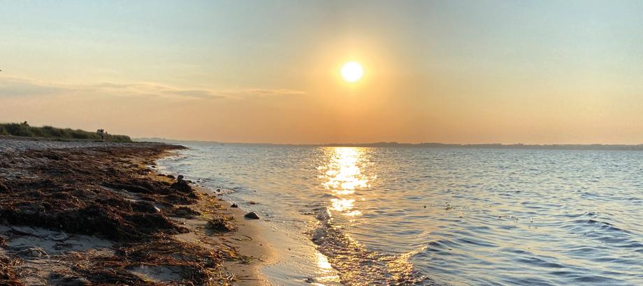 Untergehende Sonne am Strand